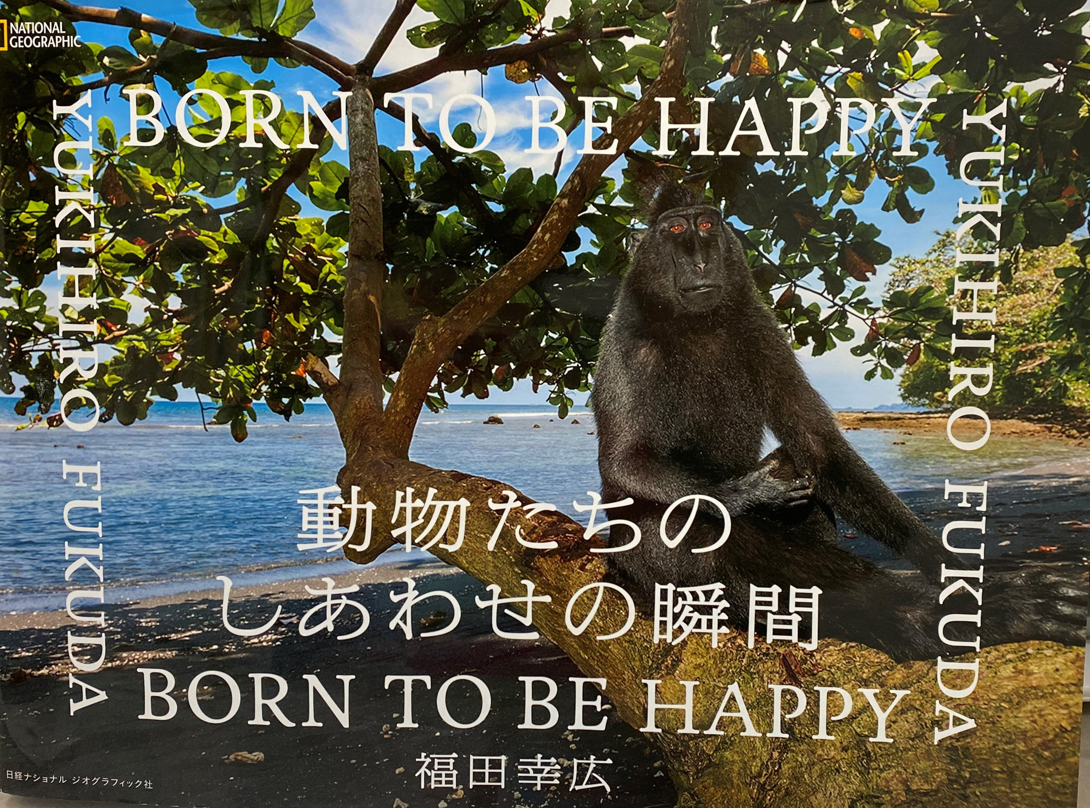 image_17176833 (2).JPG