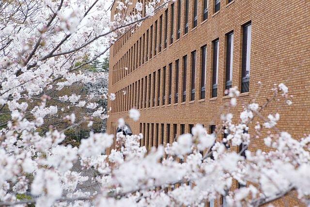 経済学部「2020年度 卒業論文 優秀賞」を発表